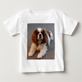 Adorable Cavalier King Charles Spaniel Baby T-Shirt