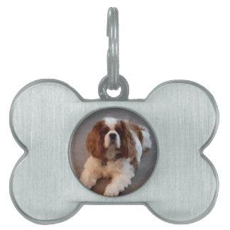 Adorable Cavalier King Charles Spaniel Pet Name Tag