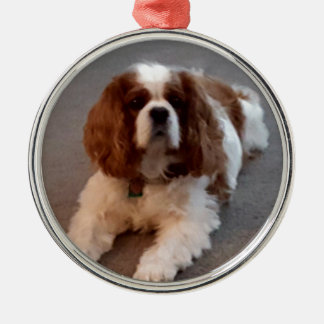 Adorable Cavalier King Charles Spaniel Silver-Colored Round Ornament