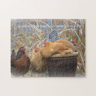 Adorable Chicken Puzzle
