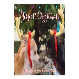 Adorable Christmas Reindeer Dogs Magnetic Card