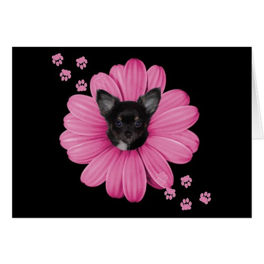 Adorable Cute Sly Heaven Chihuahua Card