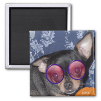Adorable Cute Suzie Doozie Chihuahua Magnet