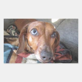 Adorable Dachshund Dog Stickers