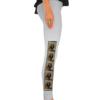 Adorable Dachshund Legging