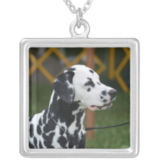 Adorable Dalmatian Silver Plated Necklace