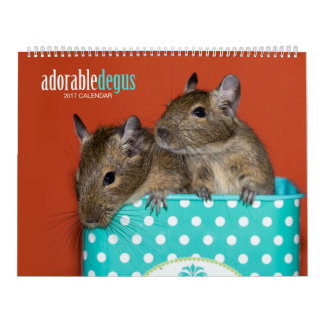 Adorable Degus 2017 Calendar