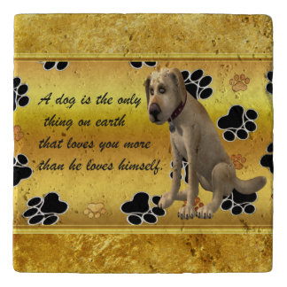 Adorable dog sitting with a cute fun quote trivet