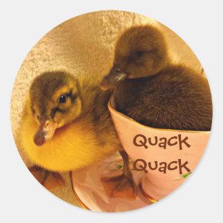 Adorable Ducks Say Quack Classic Round Sticker