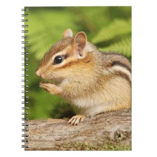 Adorable Fluffy Baby Chipmunk Spiral Notebook