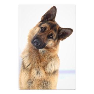 Adorable funny german shepherd portrait photo print