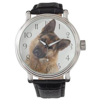 Adorable funny german shepherd portrait watch