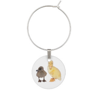 Adorable Gray and Yellow Ducklings Photograph Wine Charm