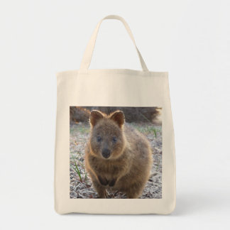 Adorable Grocery Tote