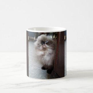 Adorable Himalayan Persian Coffee Mug