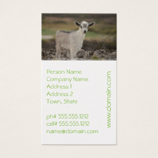 Adorable Kid Goat Business Card