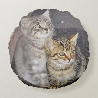 Adorable Kittens Design Round Pillow