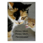 Adorable Kitty Happy Mother's Day Card