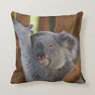 Adorable Koala Bear Pillow