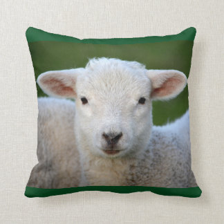 Adorable Lamb Throw Pillow