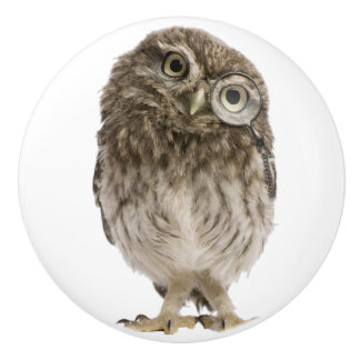 Adorable little owl wearing magnifying glass ceramic knob