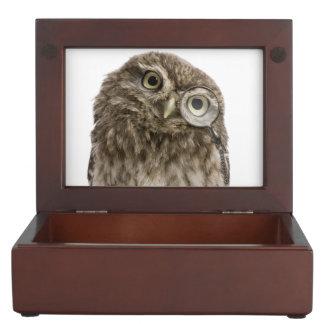 Adorable little owl wearing magnifying glass keepsake box