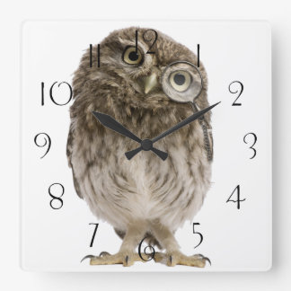 Adorable little owl wearing magnifying glass square wall clock