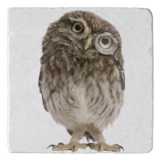 Adorable little owl wearing magnifying glass trivet