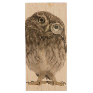 Adorable little owl wearing magnifying glass wood USB flash drive