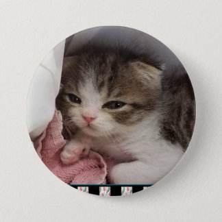 Adorable Little Sleepy-Head Kitten 3 Inch Round Button