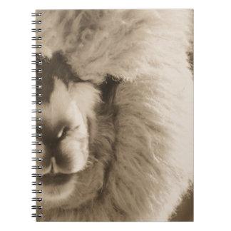 Adorable Llama/Alpaca Notebook
