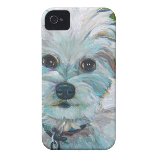 Adorable MALTIPOO iPhone 4 Covers