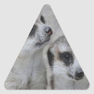 adorable meerkats s triangle sticker