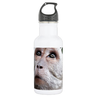 adorable monkey 532 ml water bottle