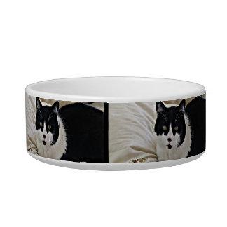 Adorable Moustache Black Cat pet food bowl