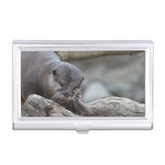Adorable Otter Business Card Holders