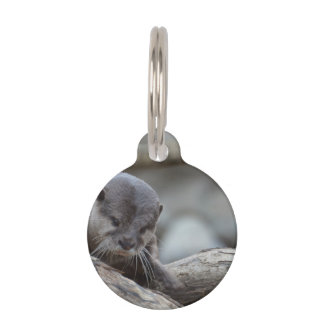 Adorable Otter Pet Tags