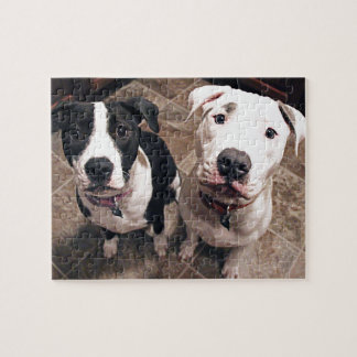 adorable pitbull puppies dogs jigsaw puzzle