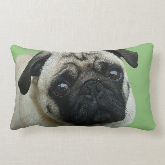 Adorable Pug American MoJo Lumbar Pillows