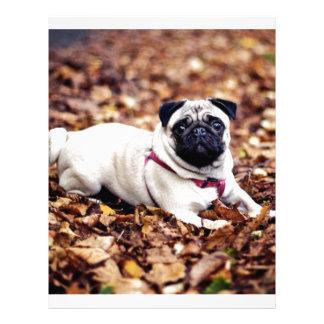 Adorable Pug Rests On The Autumn Foliage Letterhead