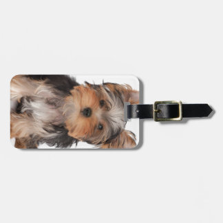 Adorable puppy luggage tag