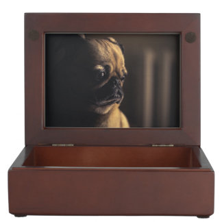 Adorable purebred pug keepsake box