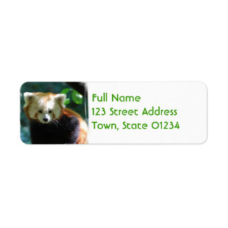 Adorable Red Panda Mailing Labels