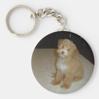 Adorable Schnoodle puppy Keychain