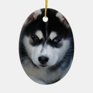 Adorable Siberian Husky Sled Dog Puppy Ceramic Ornament
