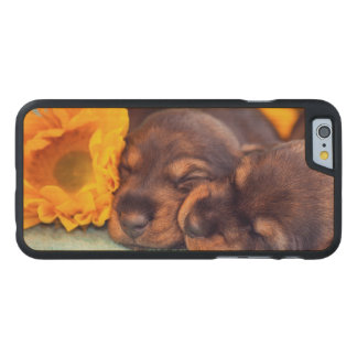 Adorable sleeping Doxen puppies Carved Maple iPhone 6 Case