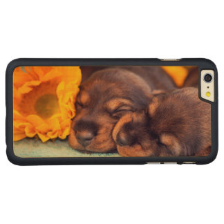 Adorable sleeping Doxen puppies Carved Maple iPhone 6 Plus Case