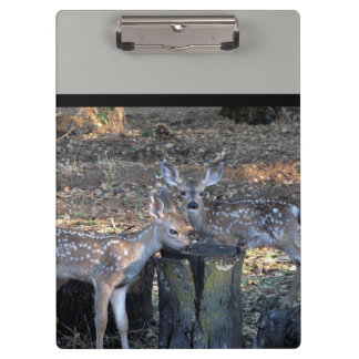 Adorable Spotted Fawns Clipboard