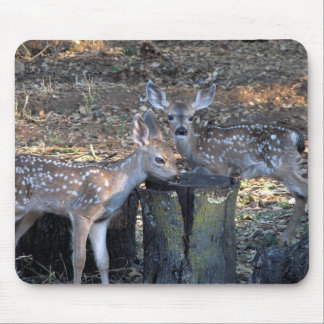 Adorable Spotted Fawns Mousepad