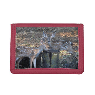Adorable Spotted Fawns Trifold Wallet